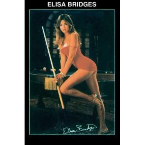 Постер для бильярда Elisa...